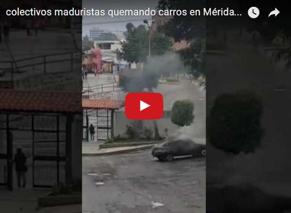 Colectivo armado incendiando vehículos en Mérida