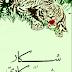 Free Download Urdu Book Shikar Or Shikari by Hamid Bin Shabbir