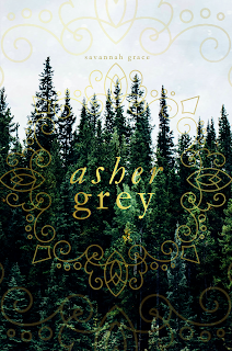 Asher Grey mock cover image
