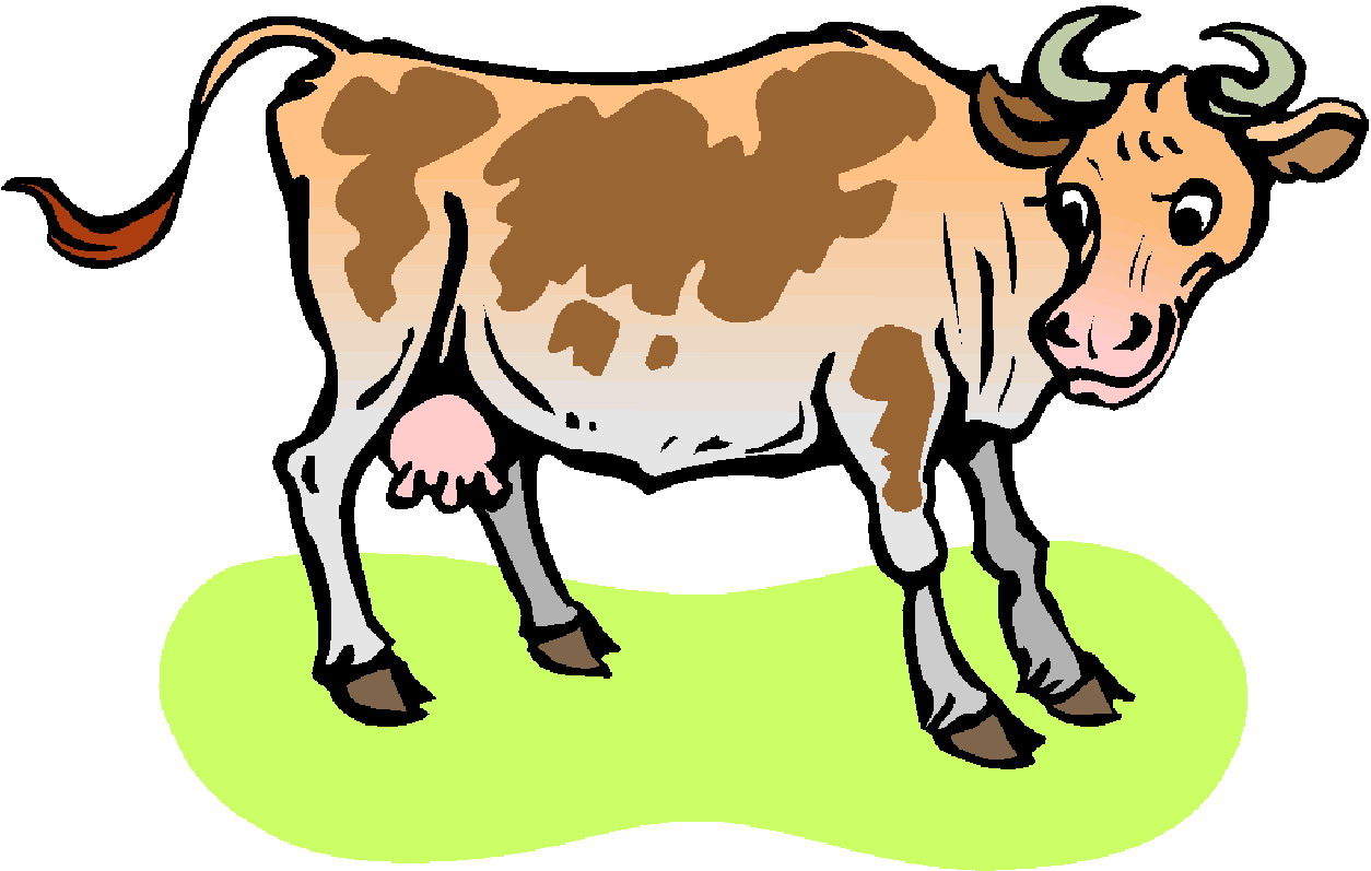 clipart cow pictures - photo #23