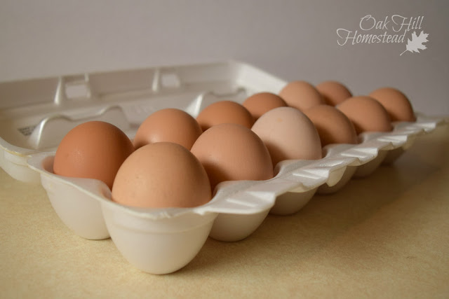 6 ways to preserve eggs