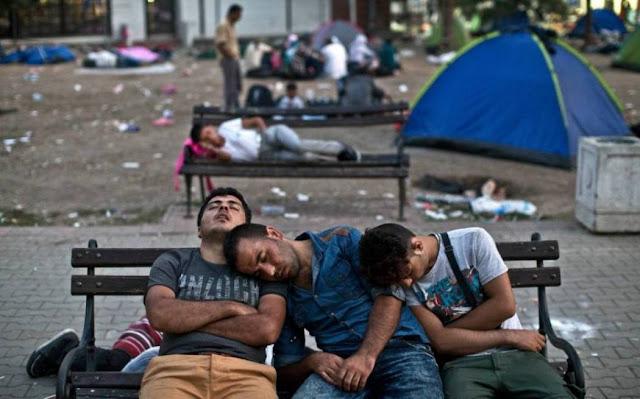 مقتل تسعة مهاجرين افغان وباكستانيين فى بلغاريا