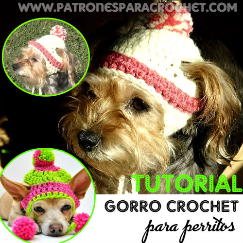 como-tejer-gorro-crochet-para-perros