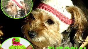 Gorro Crochet para Perritos / Tutorial