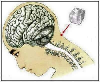 teknik feng fu, terapi feng fu, langkah terapi feng fu, atasi masalah sakit kepala, kekalkan keremajaan tubuh, tips awet muda,