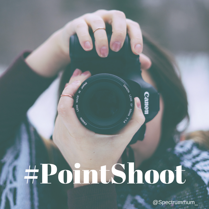 Point Shoot