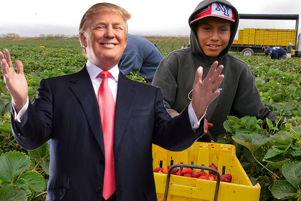 trump-hispanic-agriculture-secretary