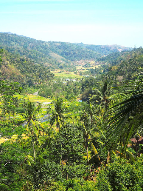 Valley & rice terraces in central Bali, Indonesia.