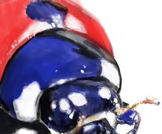 conceptart, bug paint, cintiq, desenho joaninha, draw ladybug, joaninha, Ladybug, paint, sketch, wacom cintiq, douglas deri, deri, deriart