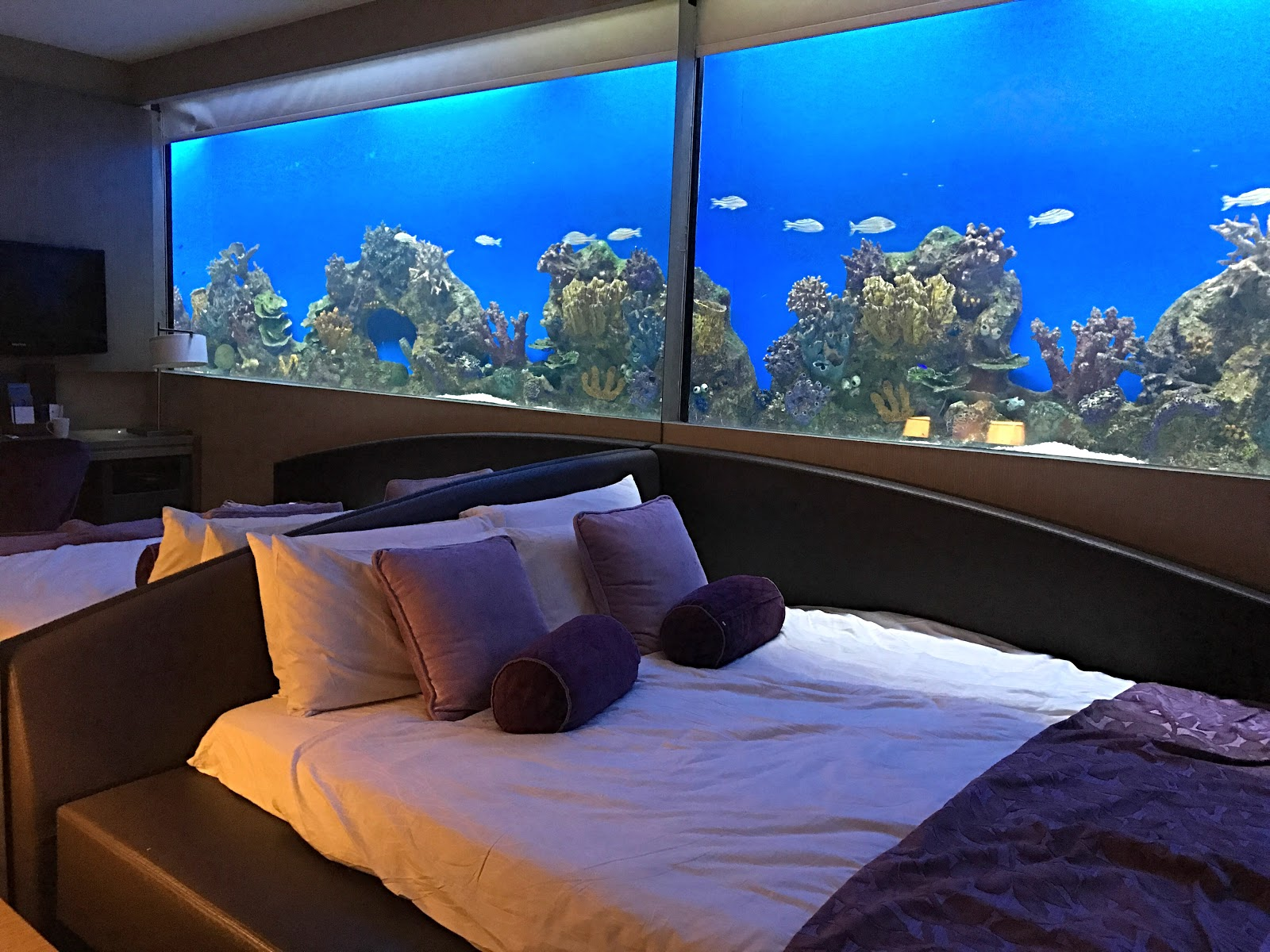 Aquarium Hotel Room Manila