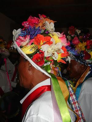 Reis de boi, Regência, Linhares, ES. Foto Maria Clara Medeiros Santos Neves. 2007.