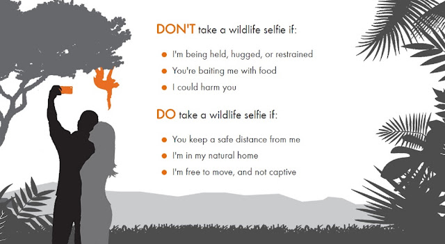 The Wildlife Selfie Code