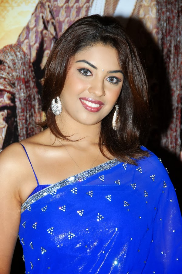 Richa Gangopadhyay Hot Looking Photos In Blue Sari