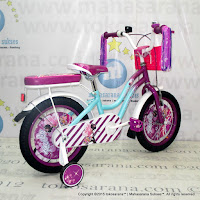 Sepeda Anak Element Keiko 16 Inci