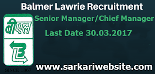 Senior Manager/Chief Manager