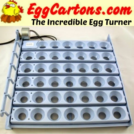The Incredible Egg Turner from EggCartons.com! (fits most incubators)