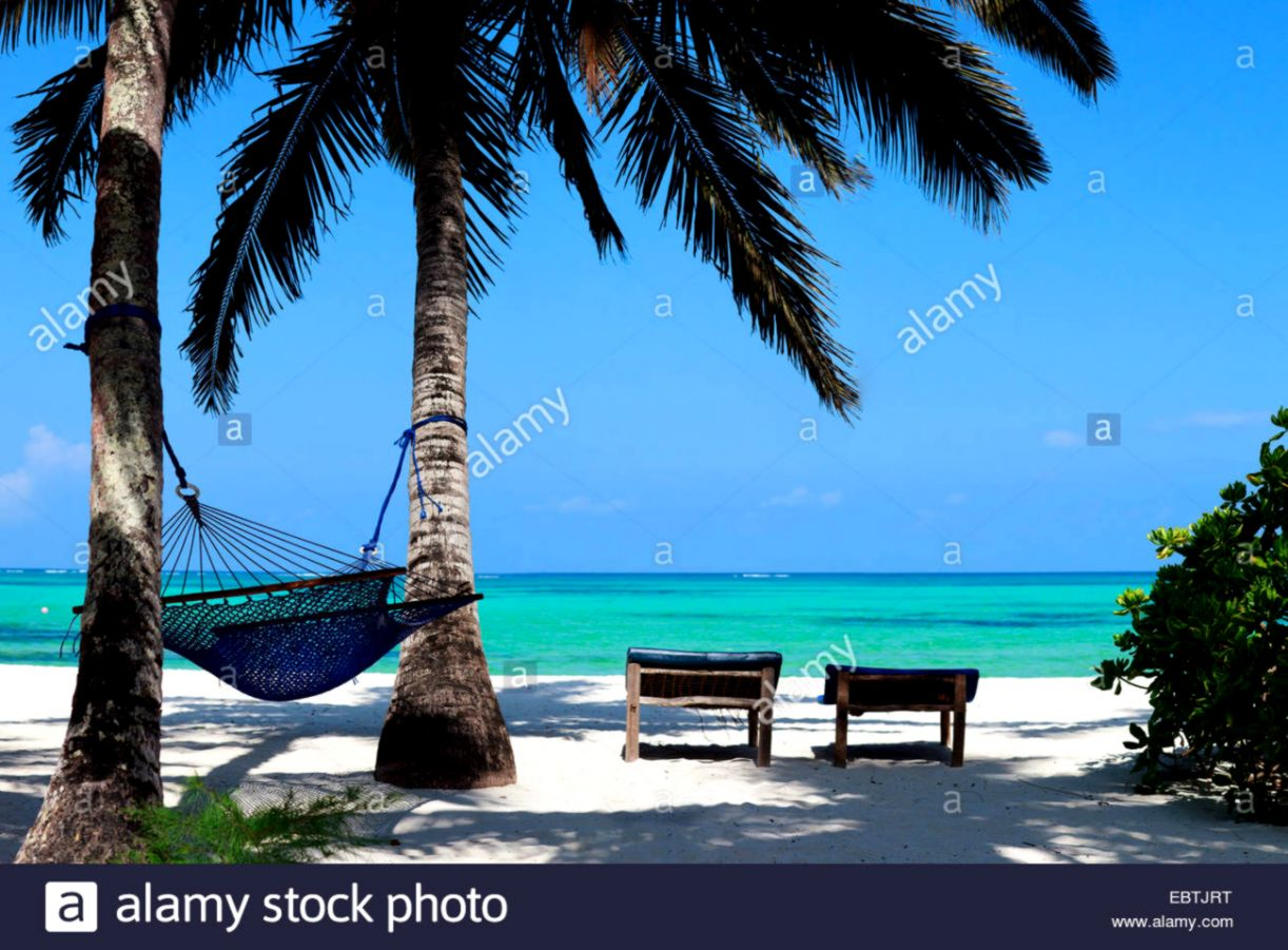 tropical beach with palm trees hammock and canvas chairs