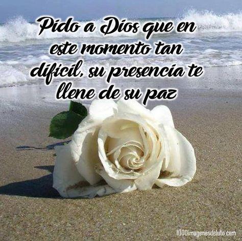 Pido a Dios que este momento tan difícil, su presencia te llene de su paz