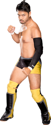 renders backgrounds logos hideo itami