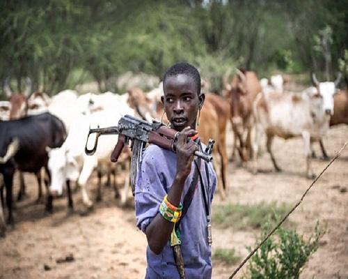 Why FG Did not Declare Fulani Herdsmen as Terrorists - Minister of Information Reveals on BBC