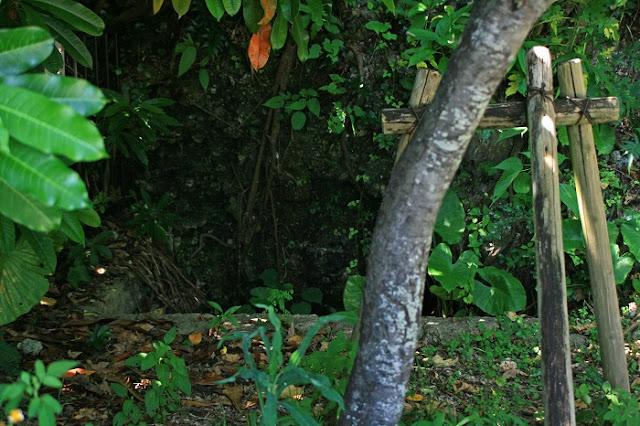 赤犬子宮(赤犬子神社)の写真