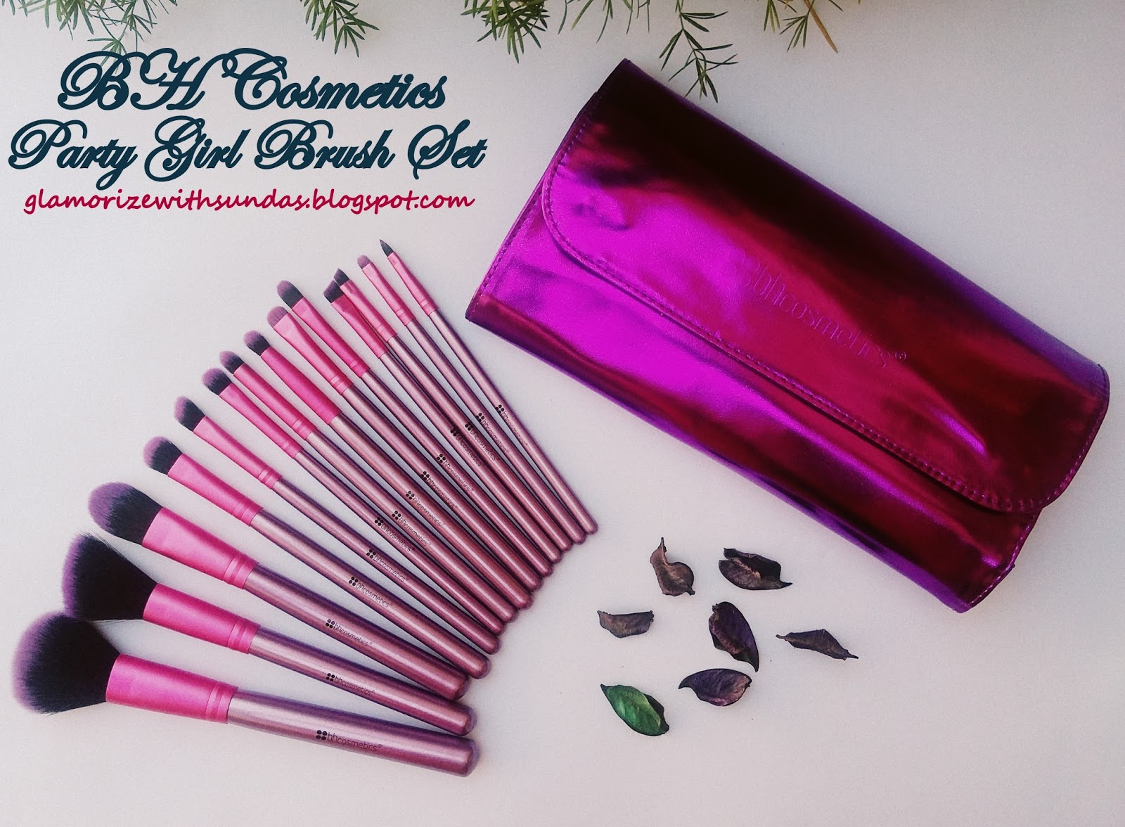 c072429897a4 Review on BH Cosmetics Party Girl Brush Set and My Shopping Experience with  Zensky.