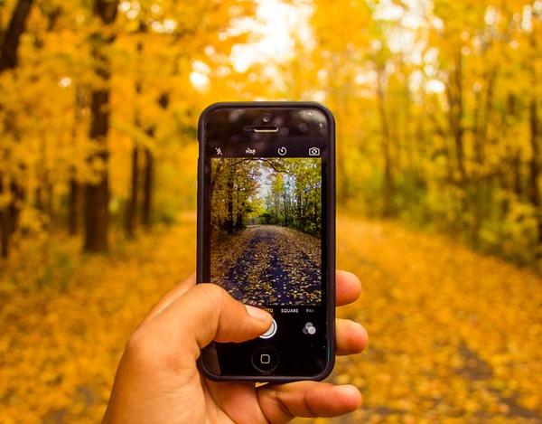 Ultimate Phone Photos