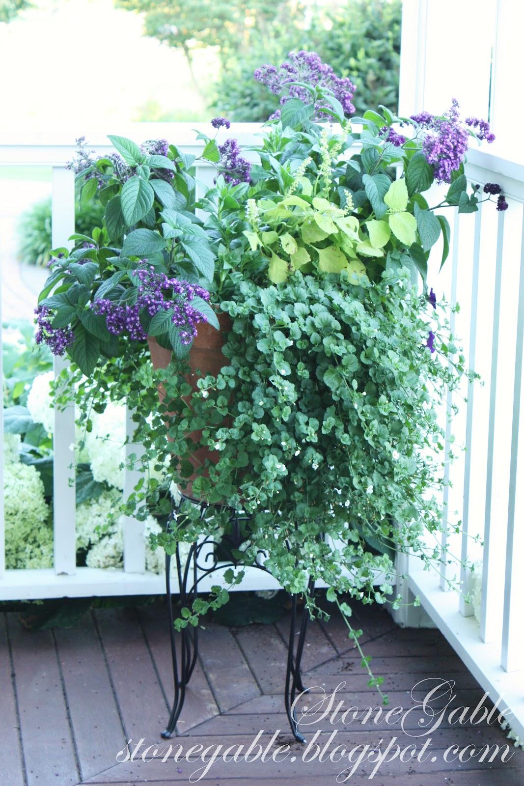 Front Porch Flowers Stonegable