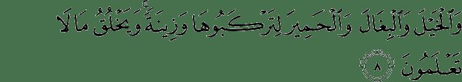 Surat An Nahl Ayat 8