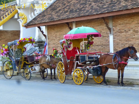 Horse-drawn carriages in Lampang, Thailand