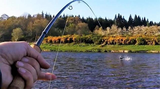 Απαγόρευση αλιείας πέστροφας σε όλες τις λίμνες και τα ποτάμια της Περιφέρειας Ηπείρου