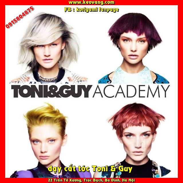 Tại sao bắt buộc phải học cắt tóc nữ theo giáo trình Toniandguy nếu muốn trở thành chuyên gia?