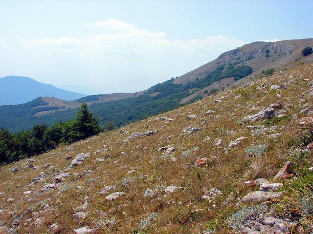 Чатырдаг. Склон верхнего плато по дороге на Эклизи-Бурун.