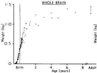 https://3.bp.blogspot.com/-6lcfePEY53Q/V8HhfixPBBI/AAAAAAAATQY/QcvFI0uQYL4o6Kx7VhAe4mAe6iEutiI8gCLcB/s320/brain-weight-curve.png
