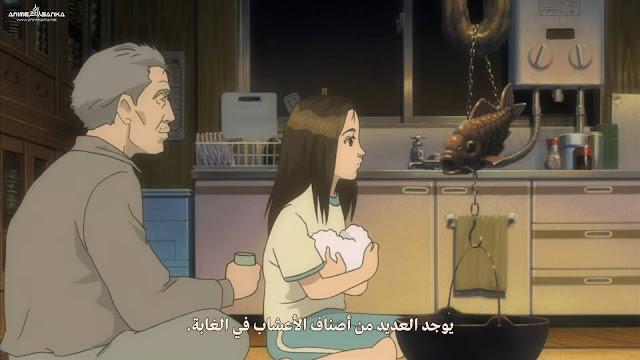 Miyori no Mori بلوراي 1080P أون لاين مترجم عربي تحميل و مشاهدة مباشرة