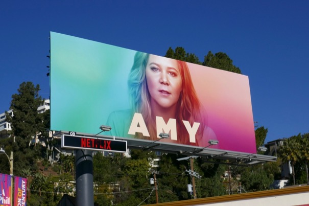 Amy Schumer A Star is Born Ally spoof billboard