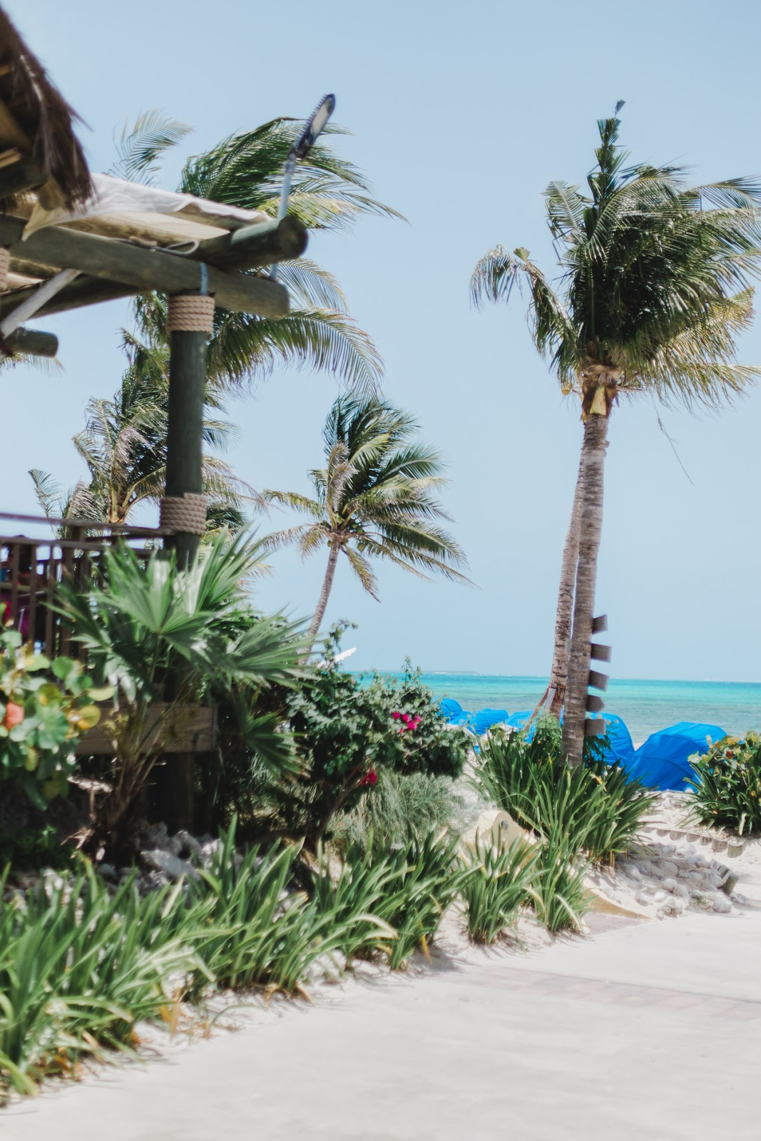grand turk island, carnival cruise, life and messy hair, xo samantha brooke, lifestyle blogger, nc blogger, nc photographer, caribbean photos, caribbean