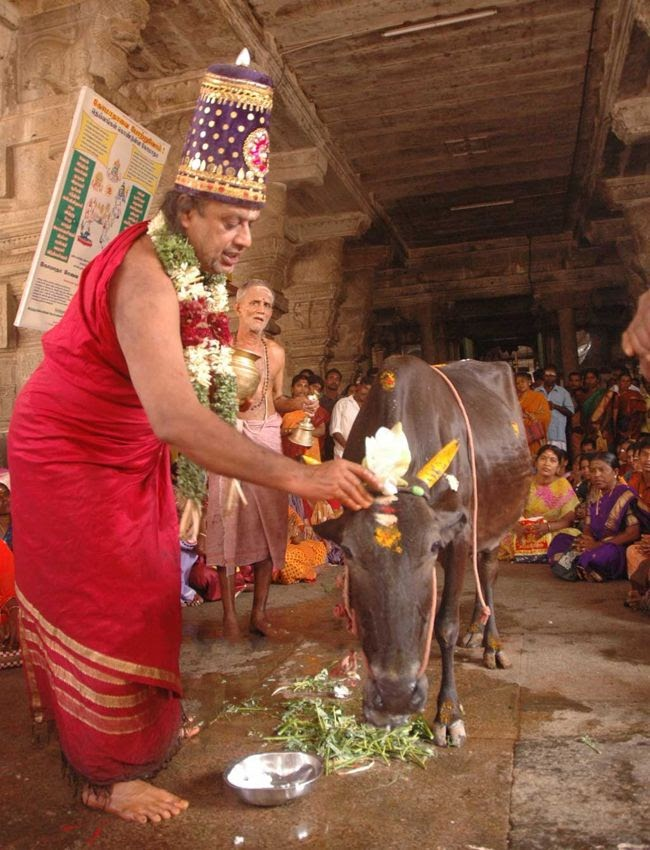 Temple Priest dressed like Devi Akilandeswari performing Go Pooja