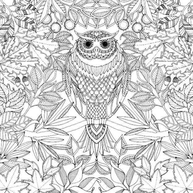 Secret Garden Coloring Pages For Adult