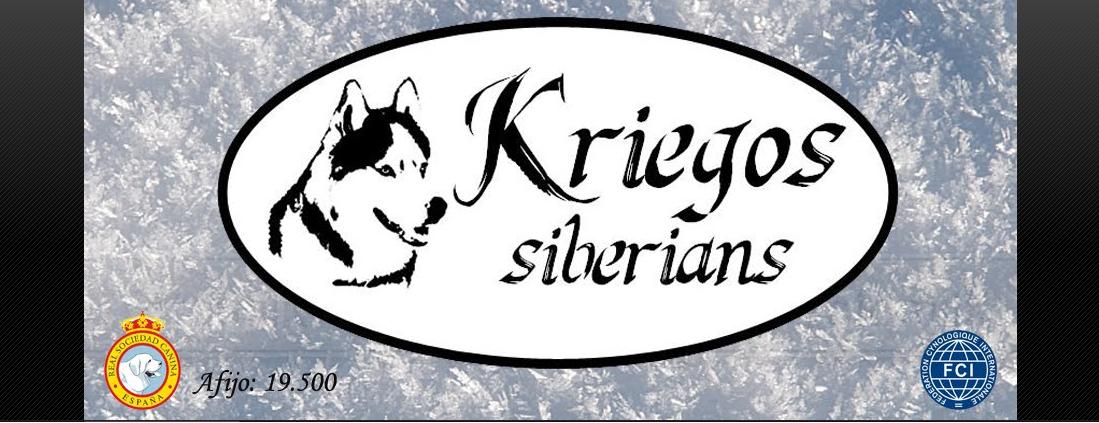 Portada Pagina Web Criadores Kriegos