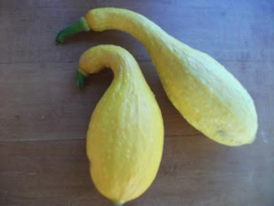 Cold Hands Warm Earth Fried Lemon Tarragon Crookneck Squash