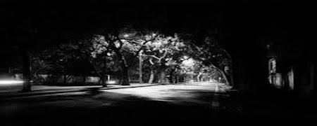 Như bóng ma đêm