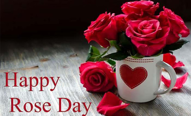 happy rose day,rose day quotes,rose day wishes,rose day,happy rose day quotes,happy rose day wishes,rose day sms,rose day greetings,rose day messages,rose day video,rose day images,happy rose day shayari,happy rose day imges wishes gif,rose day wallpaper,happy rose day status,rose day 2019,happy rose day 2019,happy rose day 2018 wishes,rose day status,rose day shayari,happy rose day video
