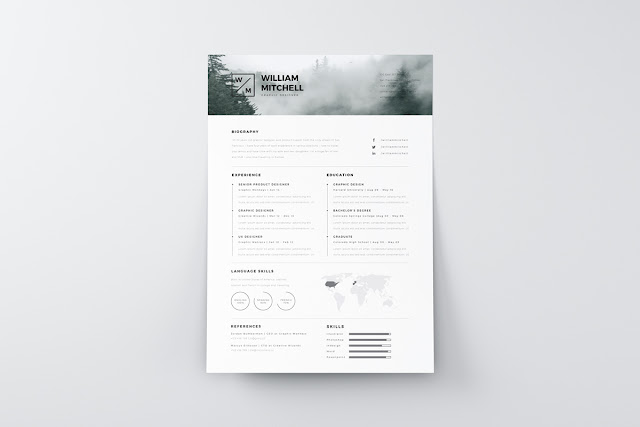 diseños de curriculums vitae