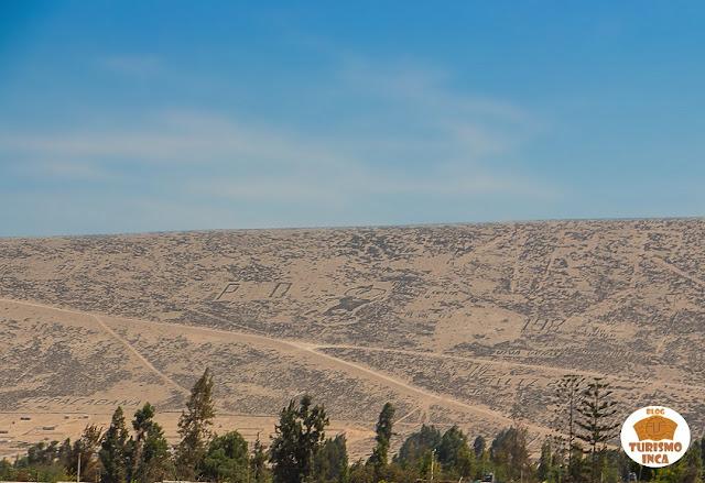 Condorito Tacna