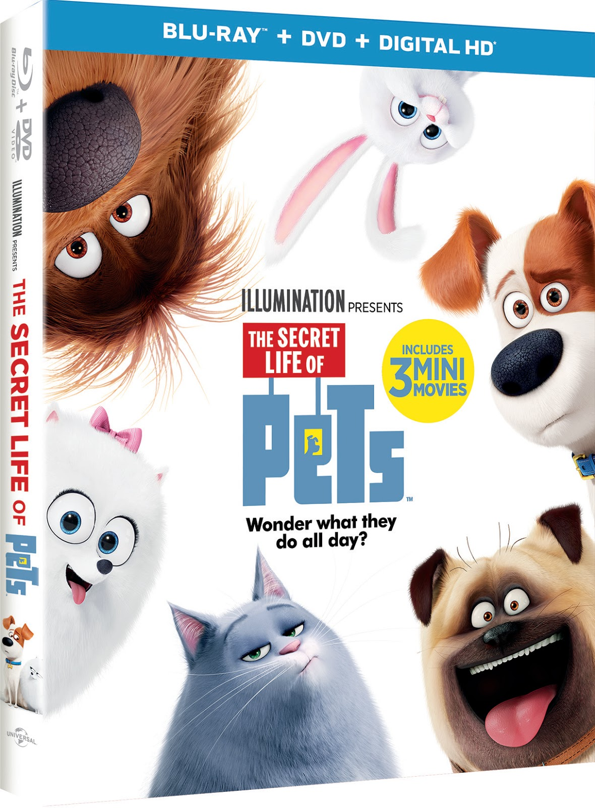 4768fd3f92d The Secret Life of Pets on Blu-Ray and DVD