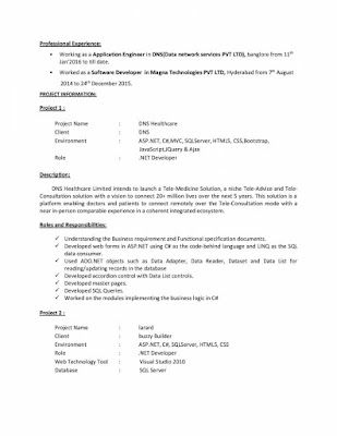 DOT NET Resume 2