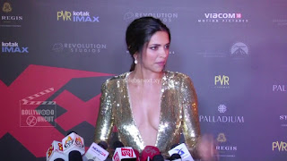 Deepika Padukone Promoting   Return of Xander Cage in India in Golde Gown 29 .xyz.jpg
