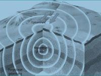 Tenaga Endogen dan Eksogen Pembentuk Litosfer Bagian 3 Gempa