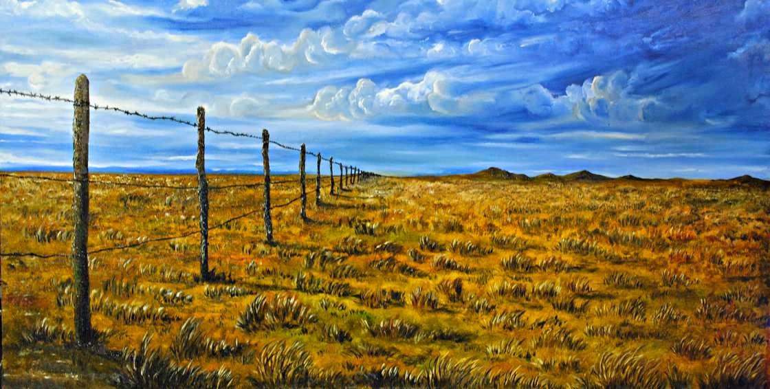 Pampas y pradera
